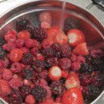 fruttacongelata